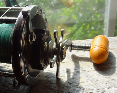 Fishing Reel II