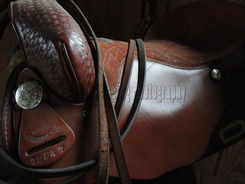 The Saddle