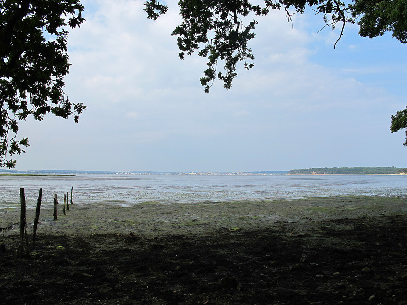 The foreshore at Ower