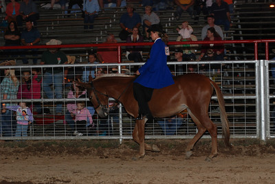 Women's Gaited Saturday Night