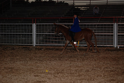 Youth Gaited Saturday Night