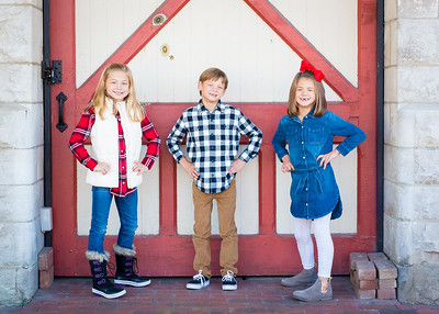 Barn Door Trio 2 (1 of 1)