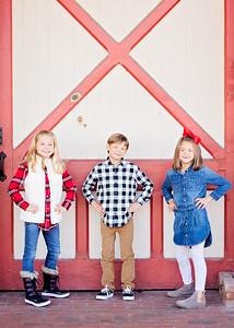Barn Door Trio (1 of 1)