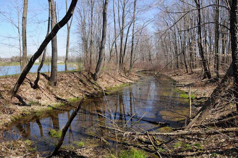 Feeder south of Work Rd.  Borders man-made lake.
