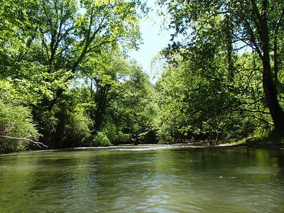 Big Canoe Creek, May 4 2014