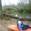 View upstream to strainer.