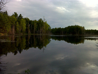 Otter's Pond on a perfect day.