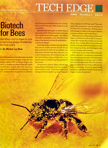 Fortune Small Business Magazine, Technology section. Stock photo from National Geographic.