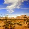 3 24 2015 Palm Canyon, KofA Nat Wild Ref, near Yuma, AZ, apr 1991f4