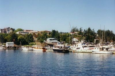 1 13 2015 San Juan Island, WA, Friday Harbor, aug 12, 1998a