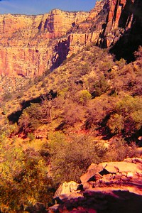 1 25 2015 Grand Canyon, on the Bright Angel Trail, sep 1968 PICT0078-1