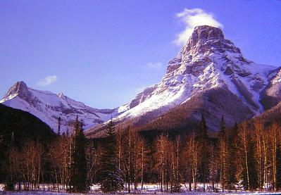 1 28 2014 Mt Hector, Banff Nat  Park, dec1972 PICT0237