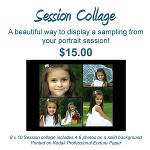 Please email photographer with collage details (specify vertical or horizontal format and file numbers of images to be included)