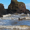 St Cyrus Bay is open and spacious, but at the north end there's a rocky cove which can produce some turbulence, and which Padaidh enjoys.<br /> <br /> 13/05/13