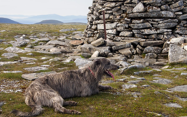 Next day, and Munro #13, Meall Chuaich.<br /> <br /> 8.45am, 08/07/13