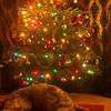 <i>Christmas is bo-o-o-o-o-ring</i><br><br>08/12/13