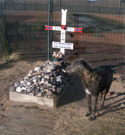 """Padaidh at Bamse's grave. Pad is pretty smart, but he couldn't read yet so I had to tell him what the information board said, which is largely what it says at  <a href=""""http://en.wikipedia.org/wiki/Bamse_%28St._Bernard%29"""">http://en.wikipedia.org/wiki/Bamse_%28St._Bernard%29</a><br /> <br /> 24/02/12"""