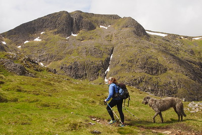 On the way to Stob Gabhar, not quite so frisky.