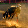 Pagosa Rodeo 2011