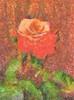 _MG_4056 for painting_DAP_Illustrator