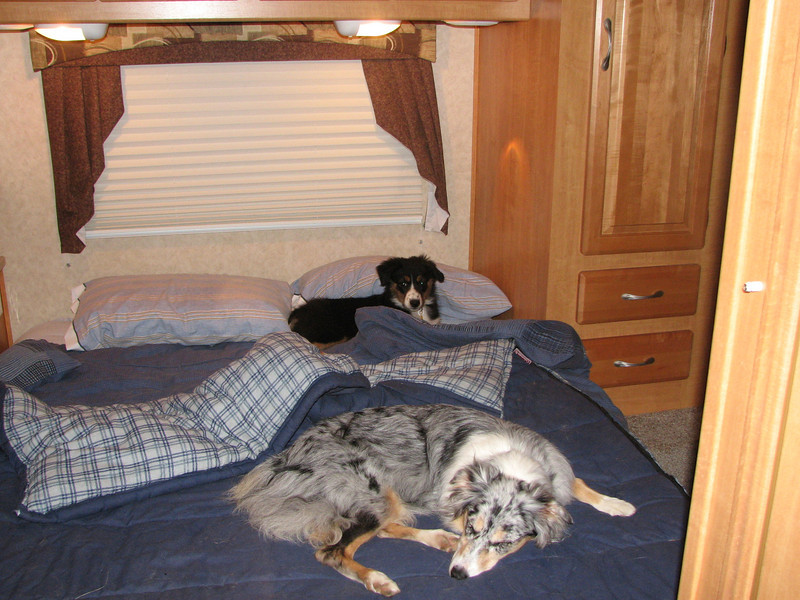 Life in the motorhome