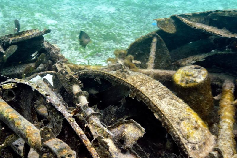 Submerged Zero in stiff current