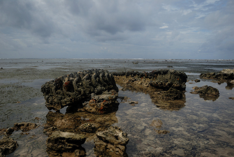 Tank treads still scar the beach at Peleliu