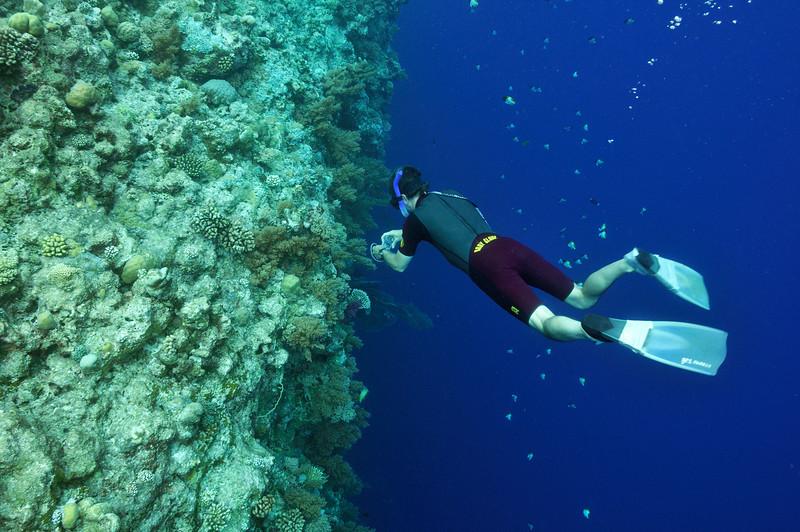 """Ken dives along the """"Big Drop-Off"""""""