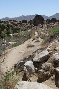 FInishing up the hike- it was about 120 degrees...literally