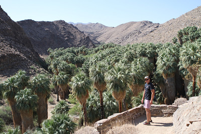 We hike in the biggest flat palm grove in the world