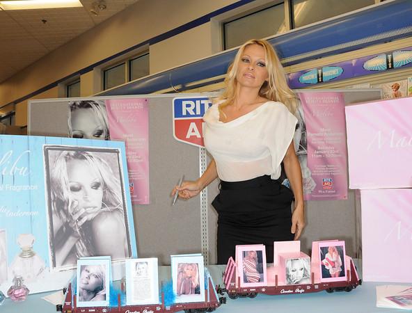 Pamela Anderson Narberth, Pa