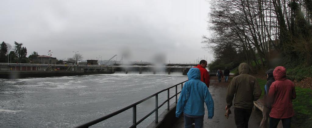 A rainy day at the Ballard Locks in Seattle, WA
