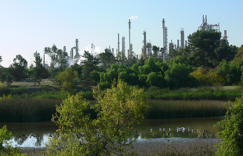 """Secret Slough"" and oil refinery, Harbor Park, Harbor City, CA"