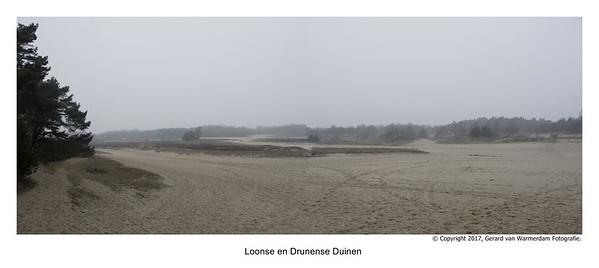 20170219 Loonse en Drunense Duinen pano1
