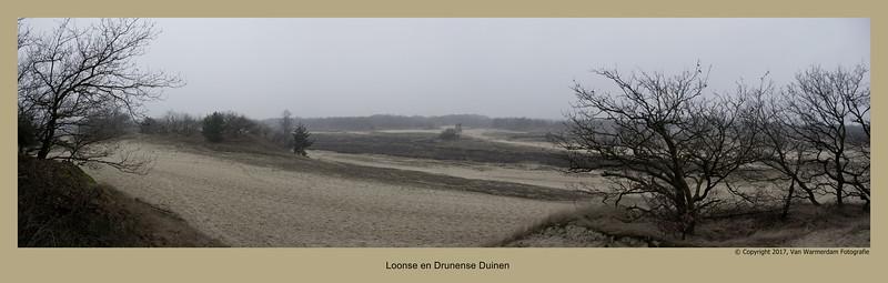 20170219 Loonse en Drunense Duinen pano3