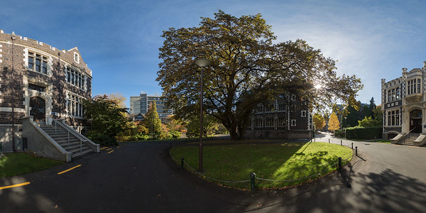 University of Otago, near Archway