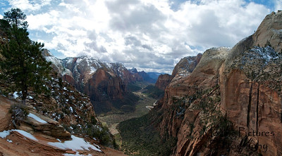 Zion National Park - top of Angel's Landing trail