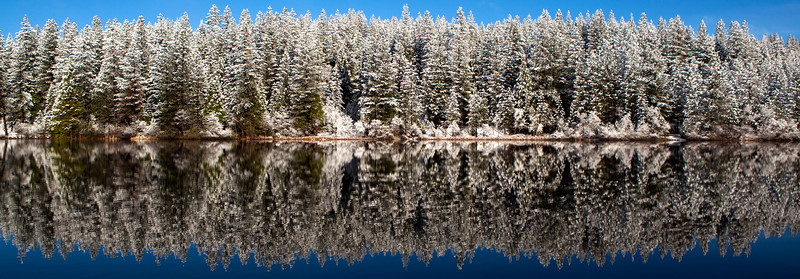Winter on White Pines Lake - A cold winter morning reflects off the still waters of White Pines Lake near Arnold  in Calaveras County California.