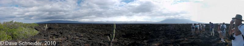 A rather barren landscape