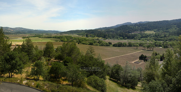 Sterling Winery Overlook