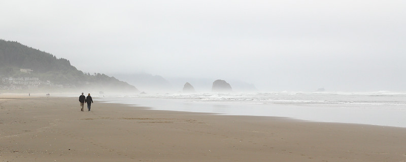 Cannon Beach Shore
