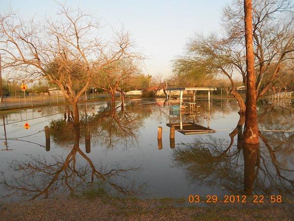 Park Storm Damage 2012