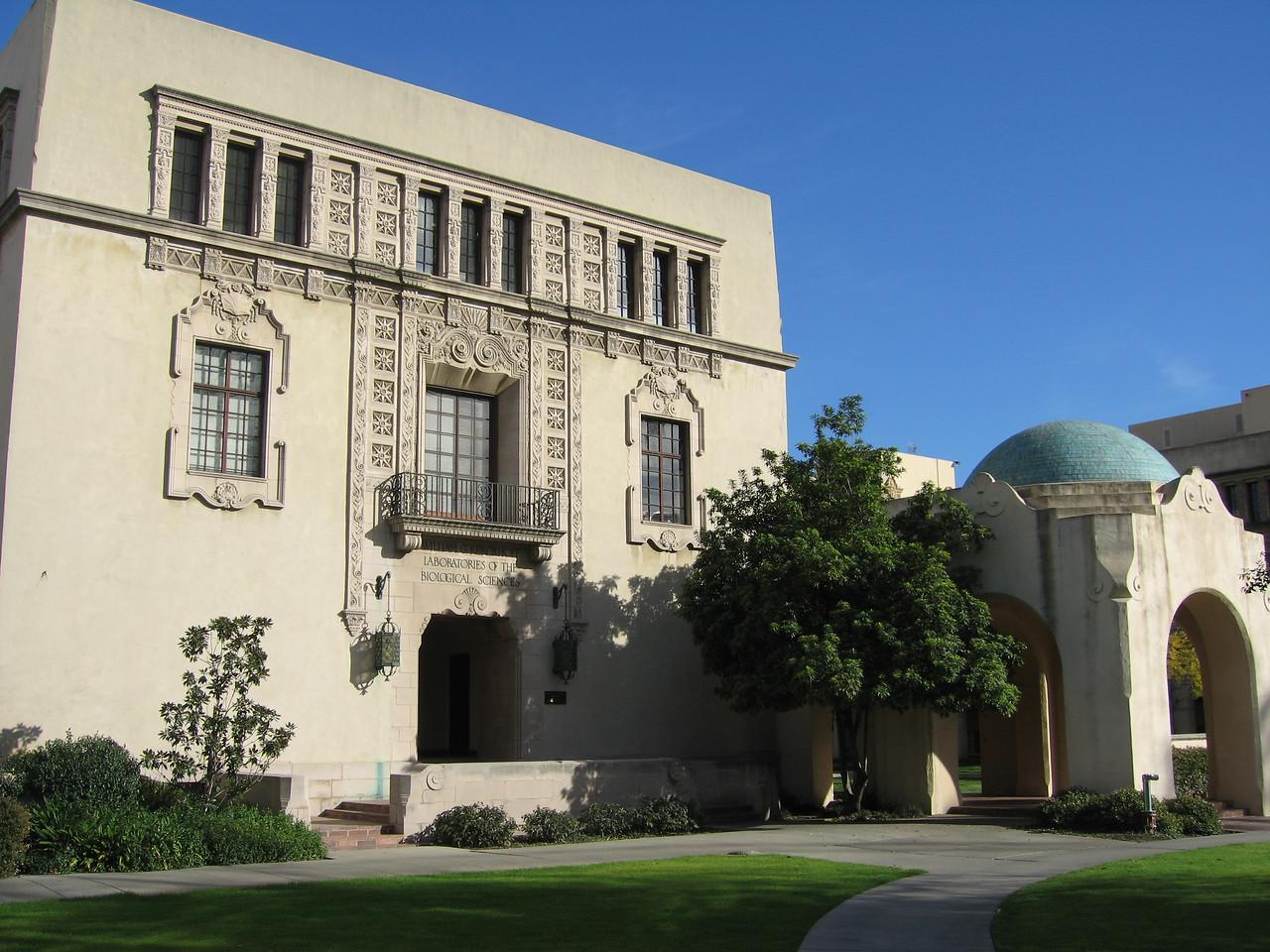 """Cal Tech  <a href=""""http://blog.kevitivity.com"""">blog.kevitivity.com</a>"""