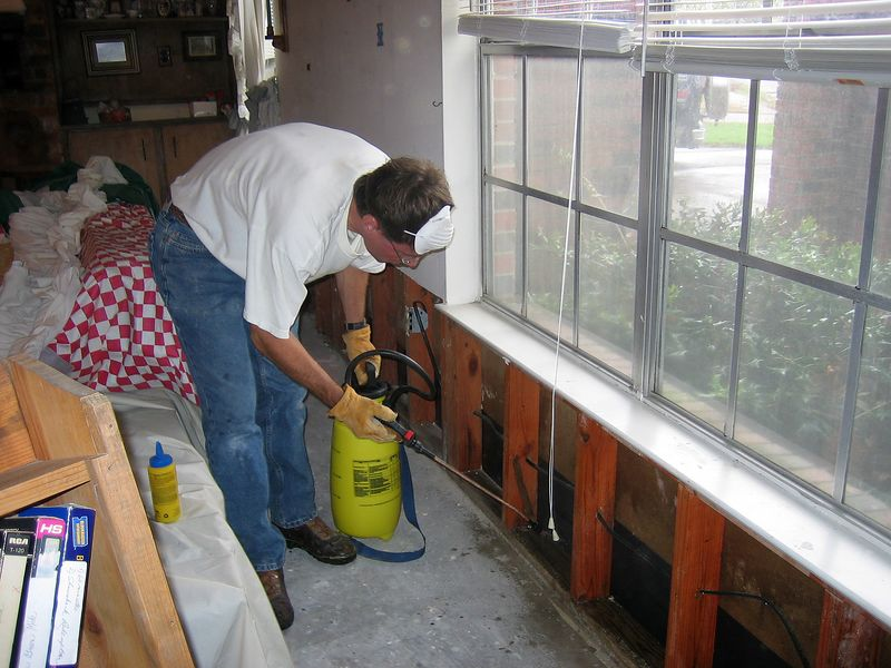 Frank Allen spraying the walls with bleach solution to kill the mold.