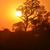 sunset in the Pantanal