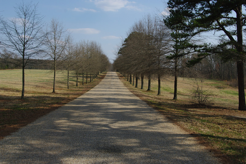 The driveway to Berry Hill.