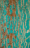 A view of an exterior windowframe covered with cracked or crackled turquoise paint that has been weathered by the sun.