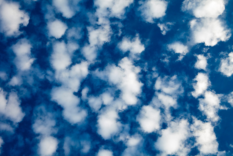 A cloudscape of puffy white altocumulus clouds forms a natural background pattern overhead.