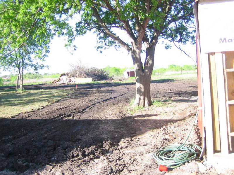 PawMatch site 4/1/2007 - 8