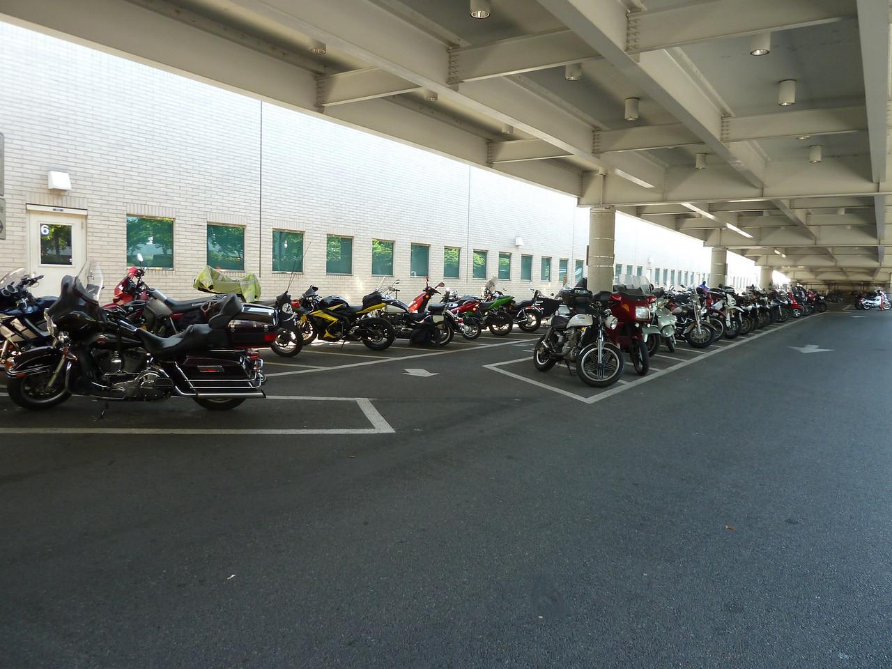 55 bikes.